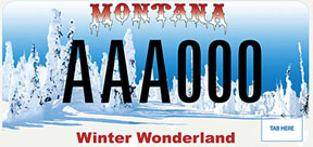 Montana Snowmobile Association Plate
